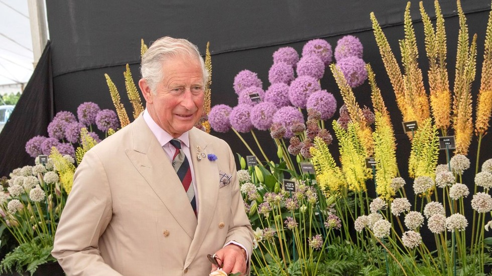 Prince Charles sees 'golden opportunity' in Covid-19 pandemic as UK economy faces biggest recession in centuries