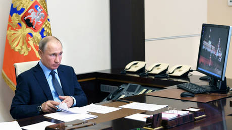 Russia's President Vladimir Putin takes part in a video conference call on June 20, 2020.