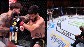 'Cleanest KO you'll ever see': Garbrandt FLATLINES Assuncao with DEVASTATING buzzer-beater at UFC 250 (VIDEO)