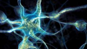 The keys to disease? Scientists reengineer one protein to fight cancer or to regenerate neurons