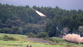 Japan scraps plans for US-made anti-missile sites, but mulls pre-emptive strike options instead