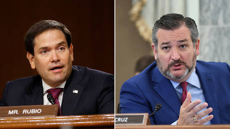 (L) U.S. Sen. Marco Rubio (R-FL) © Pool via REUTERS/Andrew Harnik/File Photo; (R) U.S. Senator Ted Cruz (R-TX) © Pool via REUTERS/Jonathan Newton/File Photo