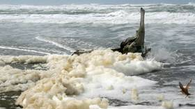 WATCH: Giant blobs of sea foam consume Cape Town as city lashed by gale force winds