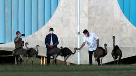 Brazil's Bolsonaro bitten by emu while recovering from coronavirus (PHOTOS)