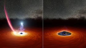 'No one had seen anything like this': Rogue star suspected as scientists see black hole's corona disappear & rebuild in real-time