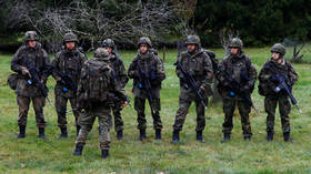 Four German soldiers probed for links to Turkey's shadowy ultranationalist Grey Wolves group – media