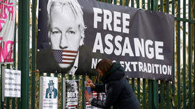 Assange's lawyers accuse US of using case for political purposes as WikiLeaks founder seen for first time in 3 months