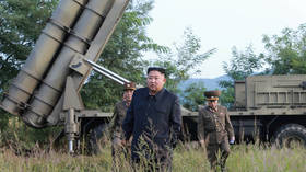 Nuclear weapons guarantee N. Korea's safety, Kim Jong-un says