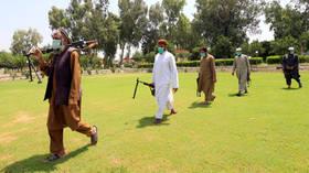 Taliban to begin 3-day Afghanistan ceasefire on Friday for Eid al-Adha holiday – spokesman
