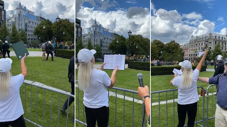 Anti-Islam protest in Oslo ends with Koran-tearing and scuffles between anti-protesters & police (PHOTOS, VIDEOS)