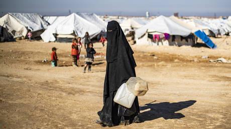 An Al-Hol refugee camp, 2020 © AFP / DELIL SOULEIMAN