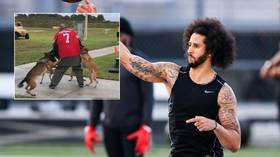 US Navy vows to investigate after military dogs MAUL Colin Kaepernick stand-in at demonstration event (VIDEO)