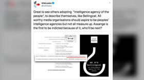 Bellingcat founder in Twitter meltdown after getting accused of 'STEALING' Assange's quote describing WikiLeaks for own book