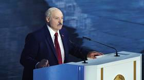 Lukashenko says Belarus has arrested US citizens as he asks Kiev & Moscow to deal with detained Russian 'mercenaries'