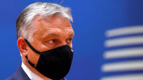 Orban says ALL illegal immigrants pose potential health risk to Hungary amid Covid-19 pandemic