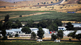 Israel shot down drone on Golan Heights overnight – military