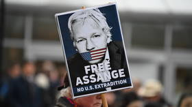 'It's David v Goliath': Assange's partner launches CrowdJustice appeal to help stop WikiLeaks founder's extradition to US