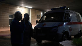 German NGO sends in ambulance plane to pick up 'poisoned' Kremlin critic Navalny at Pussy Riot co-founder's request