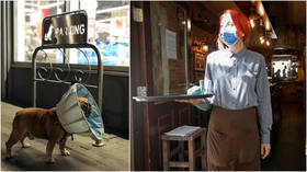 Cones of shame? Maine orders restaurant servers to don face shields like dog collars in bizarre Covid-19 guidelines