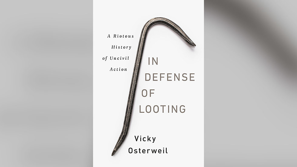 A new book says looting's fine as it's fun and people get free stuff. It costs $27.57, but perhaps you can steal it instead