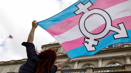 FILE PHOTO: A person holds up a transgender flag during a rally at City Hall in New York City, October 24, 2018 © Reuters / Brendan McDermid
