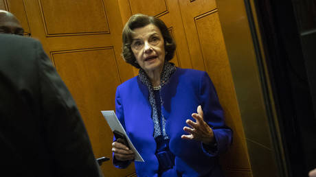 Somebody should do something? Senator Dianne Feinstein roasted for tweeting hot air on SCOTUS crisis...
