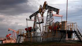Despite stereotypes about dependence on hydrocarbons, Kremlin says Russia is gradually reducing economic reliance on oil & gas