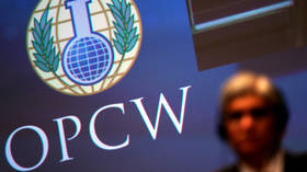 OPCW should not be a 'geopolitical tool,' Russian envoy tells UN Security Council as Germany seeks to involve it in Navalny case