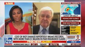 'So it's verboten?': Fox News panelist STOPS Newt Gingrich from discussing 'Soros-elected' district attorneys