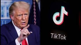 TikTok sues Trump to overturn ban that could 'destroy online community' – report