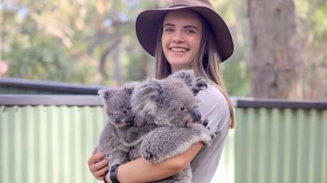 Social distancing for everyone but the koalas © Global Look / Keystone Press Agency