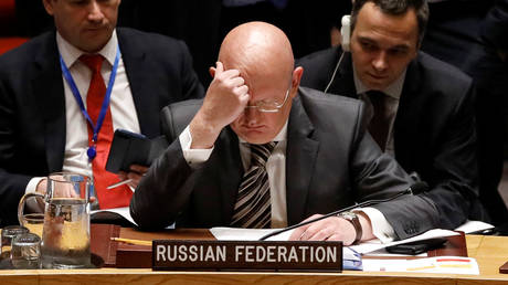 FILE PHOTO: Vassily Nebenzia, Russian Ambassador to the United Nations, at a United Nations Security Council meeting