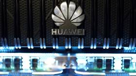 Japan's Sony & chipmaker Kioxia want to resume supplying sanctioned Huawei – report