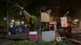 Portland's elk statue saga continues as Patriot Prayer kidnaps replacement, 'literal trash heap' built instead