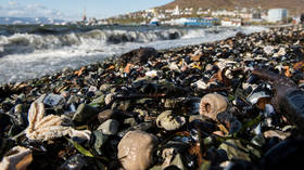 Fresh concerns as hordes of fish & marine life washes ashore in new location in Russia's Far Eastern Kamchatka peninsula  (VIDEO)