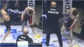 Out on his feet: Russian MMA fighter leaves fans stunned with crazy 'standing KO' victory (VIDEO)