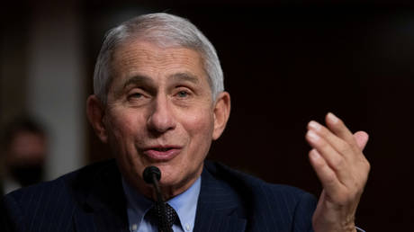 Anthony Fauci is shown testifying in a US Senate hearing in September.