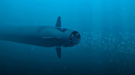 The Poseidon multipurpose ocean system. A screenshot from a video provided by the Russian Defense Ministry © Sputnik / Russian Defense Ministry