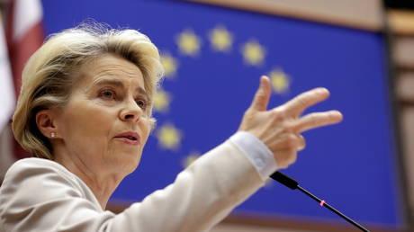 European Commission President Ursula Von Der Leyen speaks during a plenary session at the European Parliament in Brussels, Belgium, November 25, 2020. © Reuters / Olivier Hoslet / Pool