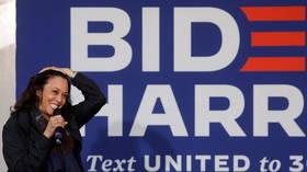 Kamala Harris' final push to voters through 'equality v equity' video slammed as 'woke Marxism'