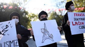 France sparks outrage in Turkey with plans to outlaw 'Grey Wolves' nationalist group