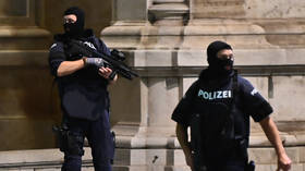 Vienna attack carried out by 'at least 1 Islamist terrorist' & 'Islamic State sympathizer' – Austrian interior minister