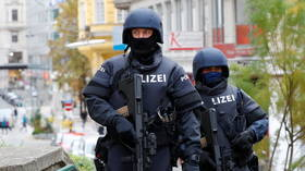 All 15 detained over Vienna terrorist attack part of radical Islamist network – Austrian public security director