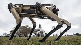 What could go wrong?! US Air Force adds 'semi-autonomous' robot dogs to patrols on Florida base (VIDEO)