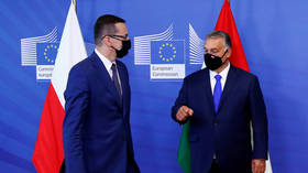 Poland and Hungary can go to the European Court of Justice instead of blocking EU budget over 'rule of law' – EC Chief