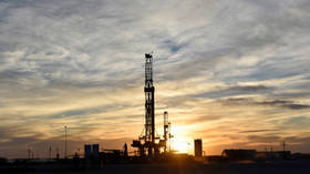 OPEC+ may delay crude production hike while keeping one eye on US shale