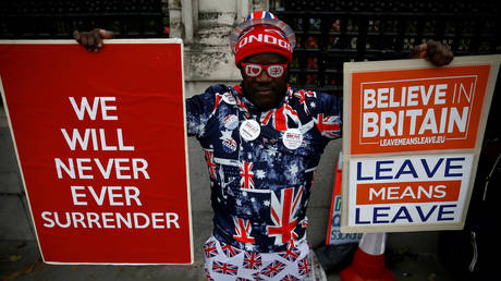 FILE PHOTO: A pro-Brexit supporter holds signs outside the Houses of Parliament in London, Britain. © REUTERS / Henry Nicholls