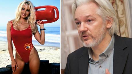 Combined image: Pamela Anderson © Global Look Press/Rights Managed via www.imago-ima/Assange: © David G Silvers. Cancillería del Ecuador