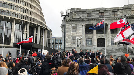 Ministers address Maori protesters gathered to demonstrate against what they say is the disproportionate number of Maori children taken by social service agencies from their families, in Wellington, New Zealand, July 30, 2019. © Reuters / Praveen Menon