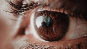 Scientists on verge of creating 'artificial vision' which could restore partial sight in the blind via BRAIN IMPLANTS